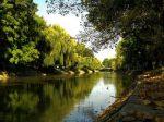Canalul Bega _14_